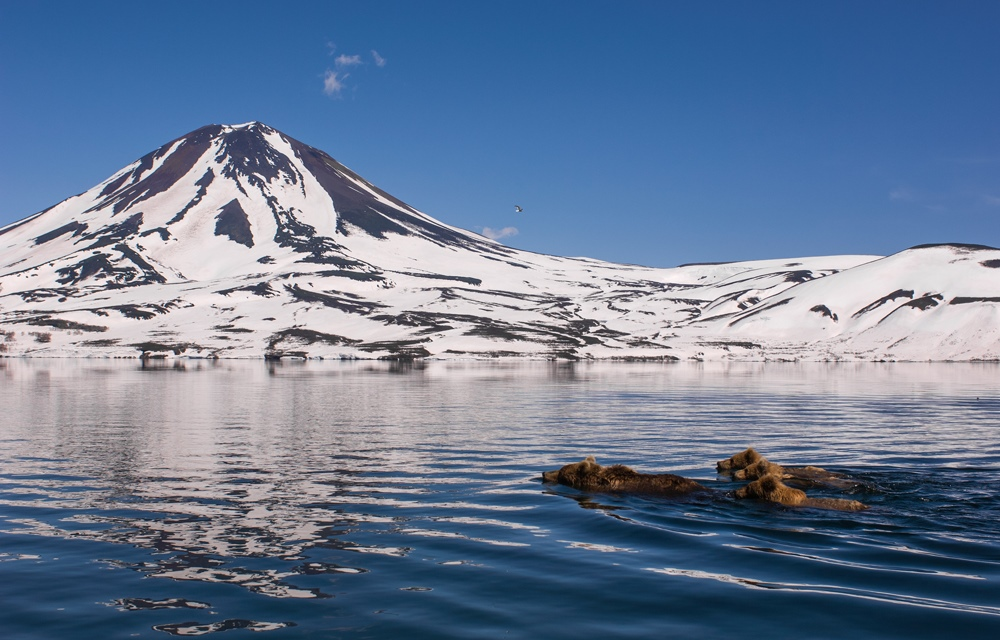 Beautiful photos from Kamchatka - 26