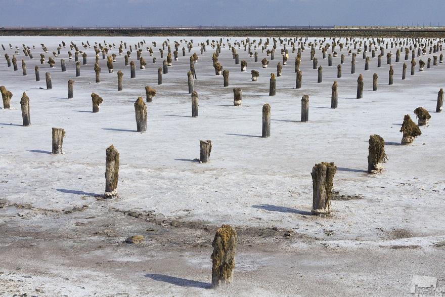 Salt columns