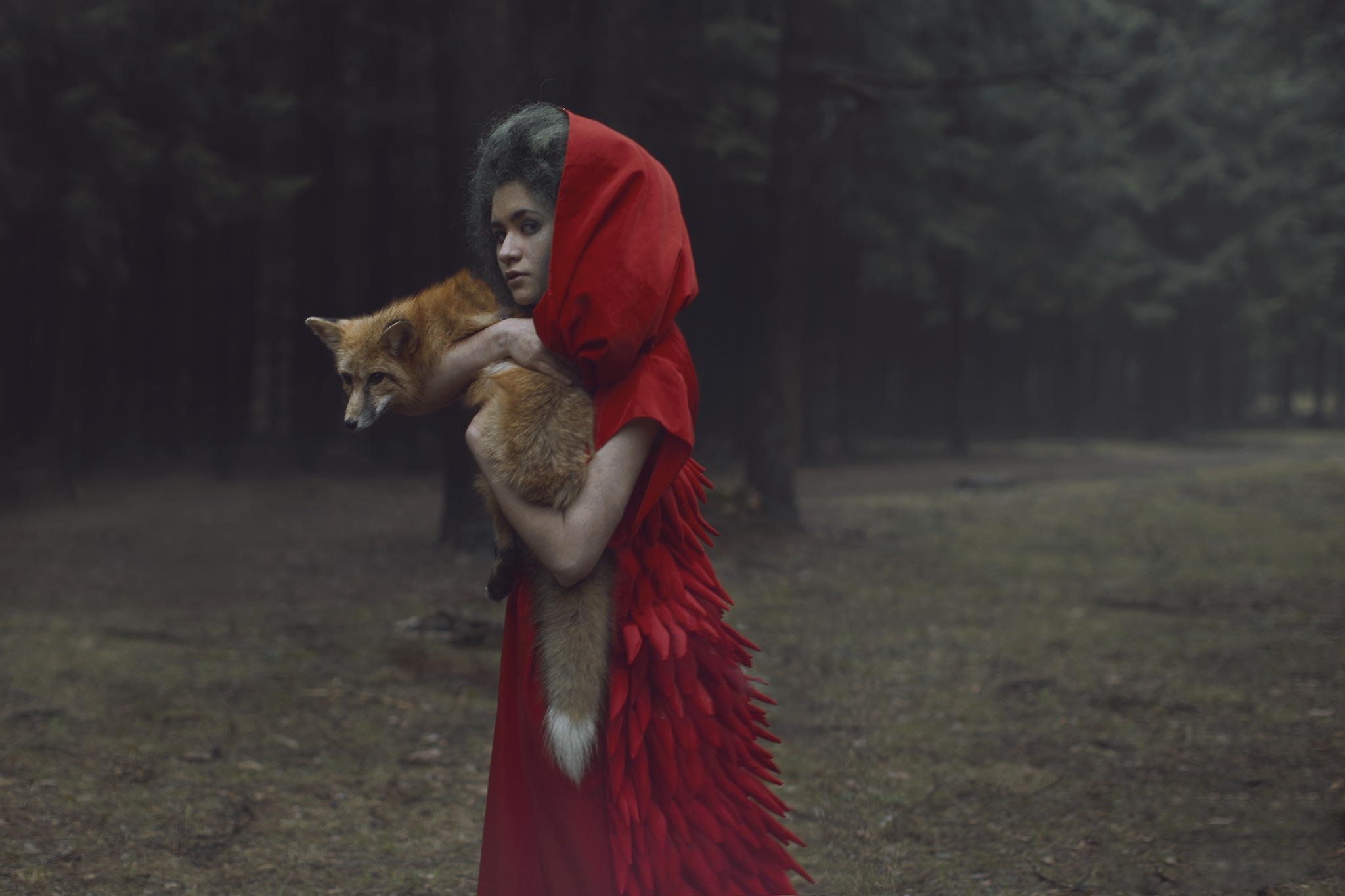 Photos by Russian photographer Katerina Plotnikova: Part 2 - 21