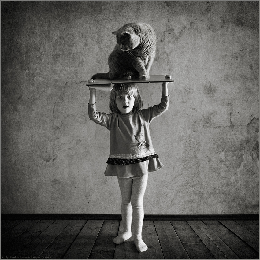 A little story about a big friendship between a girl and a cat - 34