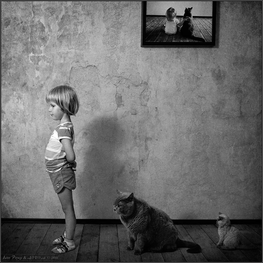 A little story about a big friendship between a girl and a cat - 47