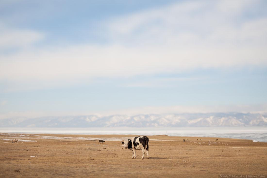 Lake Baikal and Olkhon Island: Wonderful ice world of cold Siberia - 16
