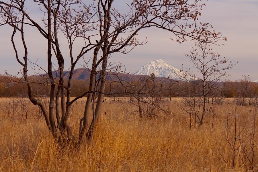 Volcanoes, caves, and wonderful wild nature of Kamchatka Peninsula - 34