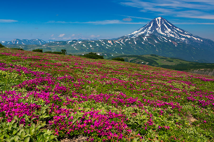Volcanoes, caves, and wonderful wild nature of Kamchatka: Part 2 - 22