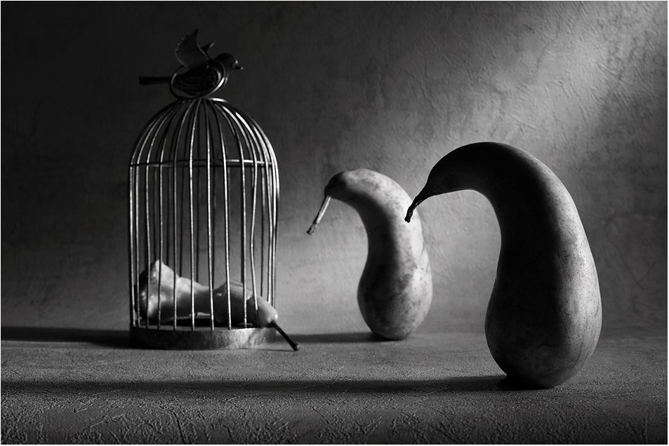 Black-white artwork by a Russian photographer Victoria Ivanova - 29