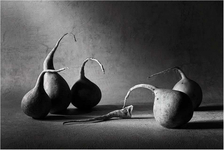 Black-white artwork by a Russian photographer Victoria Ivanova - 30