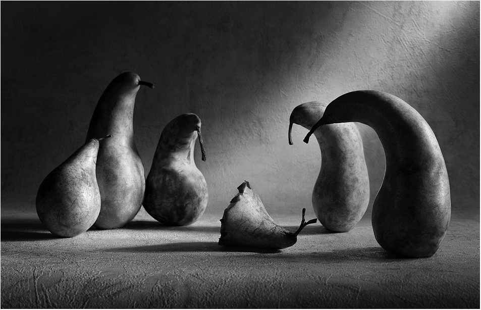 Black-white artwork by a Russian photographer Victoria Ivanova - 32