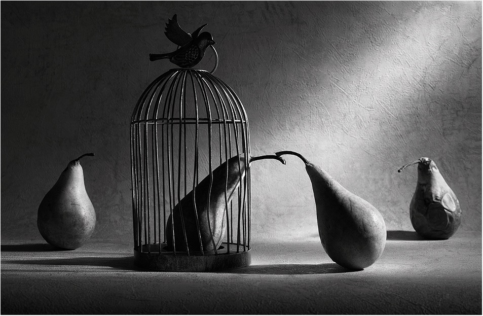Black-white artwork by a Russian photographer Victoria Ivanova - 48
