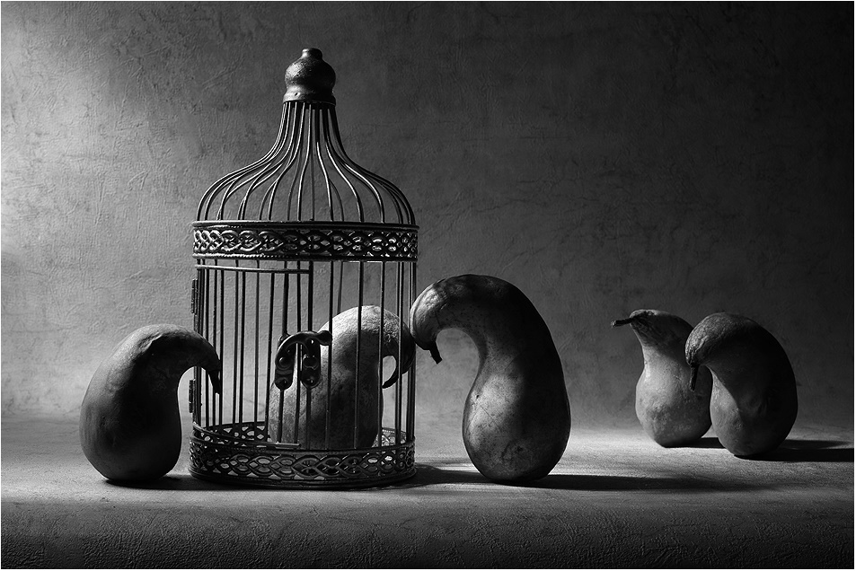 Black-white artwork by a Russian photographer Victoria Ivanova - 66