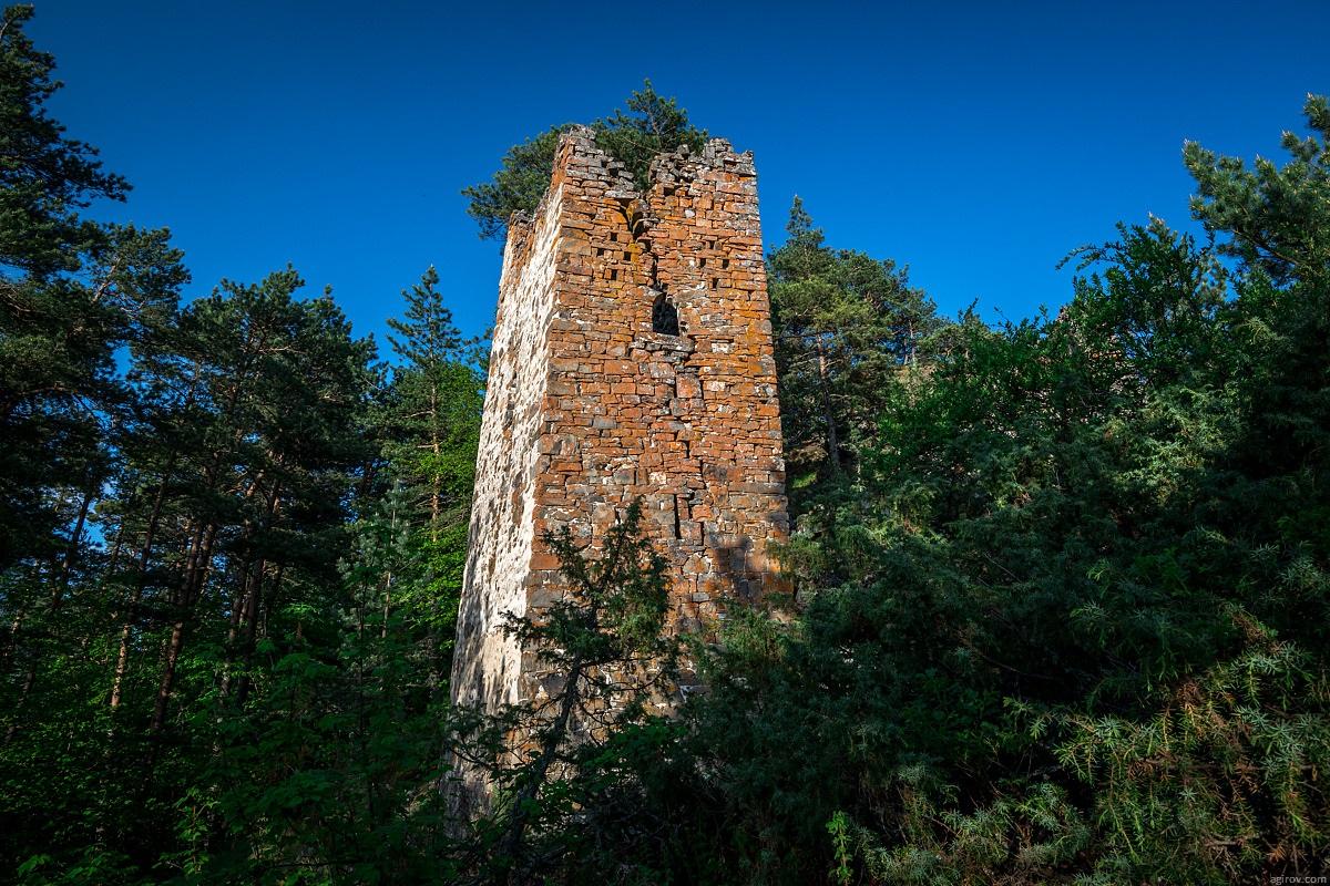 Nature of Ingushetia: Picturesque landscapes of the Republic - 23