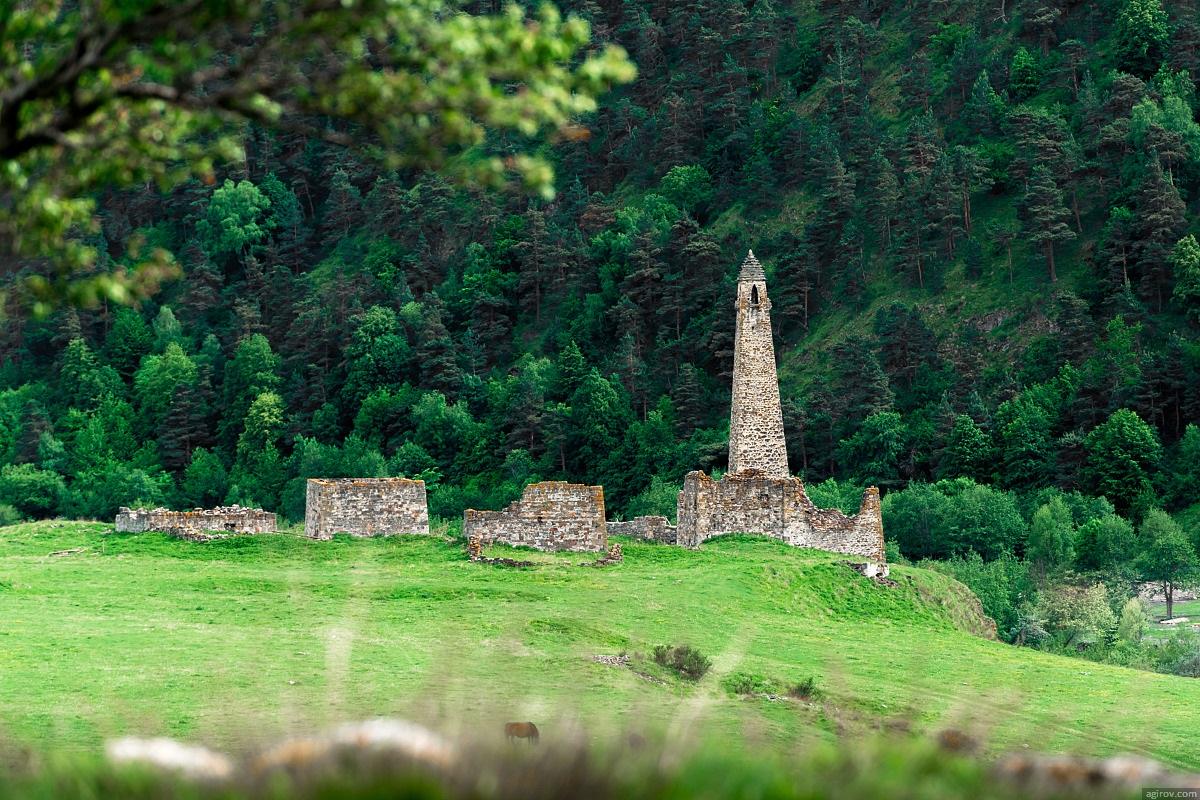 Nature of Ingushetia: Picturesque landscapes of the Republic - 35