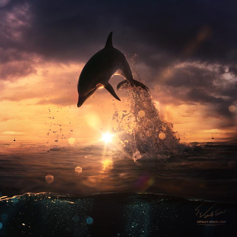 Underwater dances: Wonderful undersea photos by Vitaly Sokol - 15