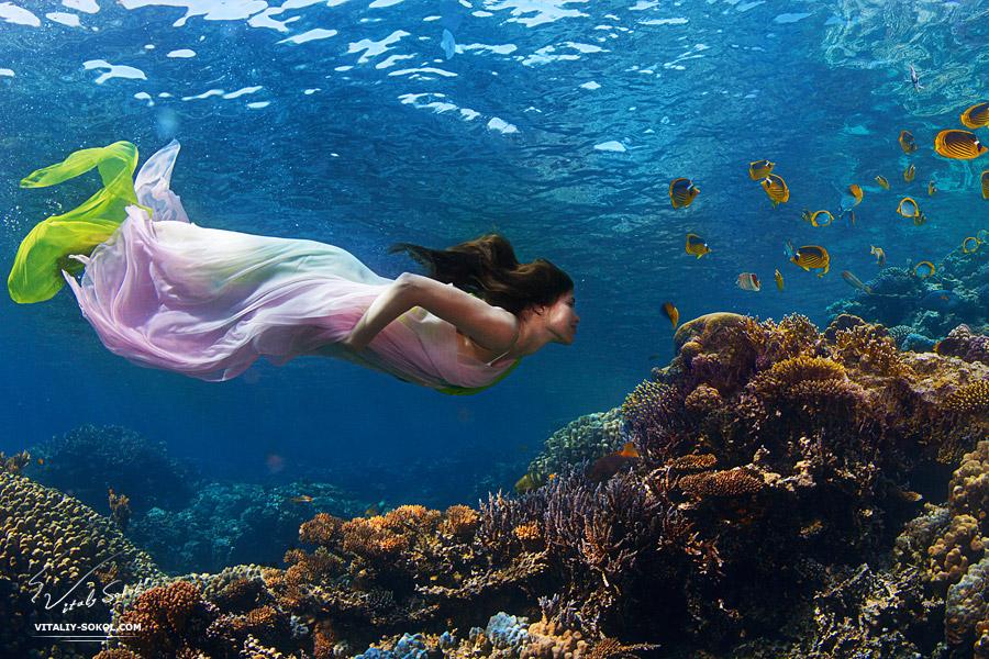 Underwater dances: Wonderful undersea photos by Vitaly Sokol - 16