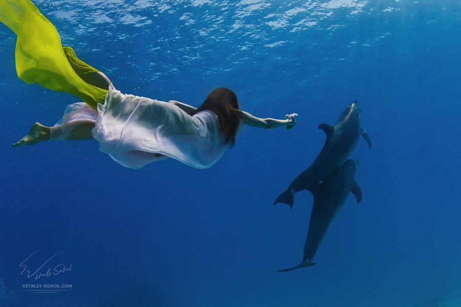 Underwater dances: Wonderful undersea photos by Vitaly Sokol - 17