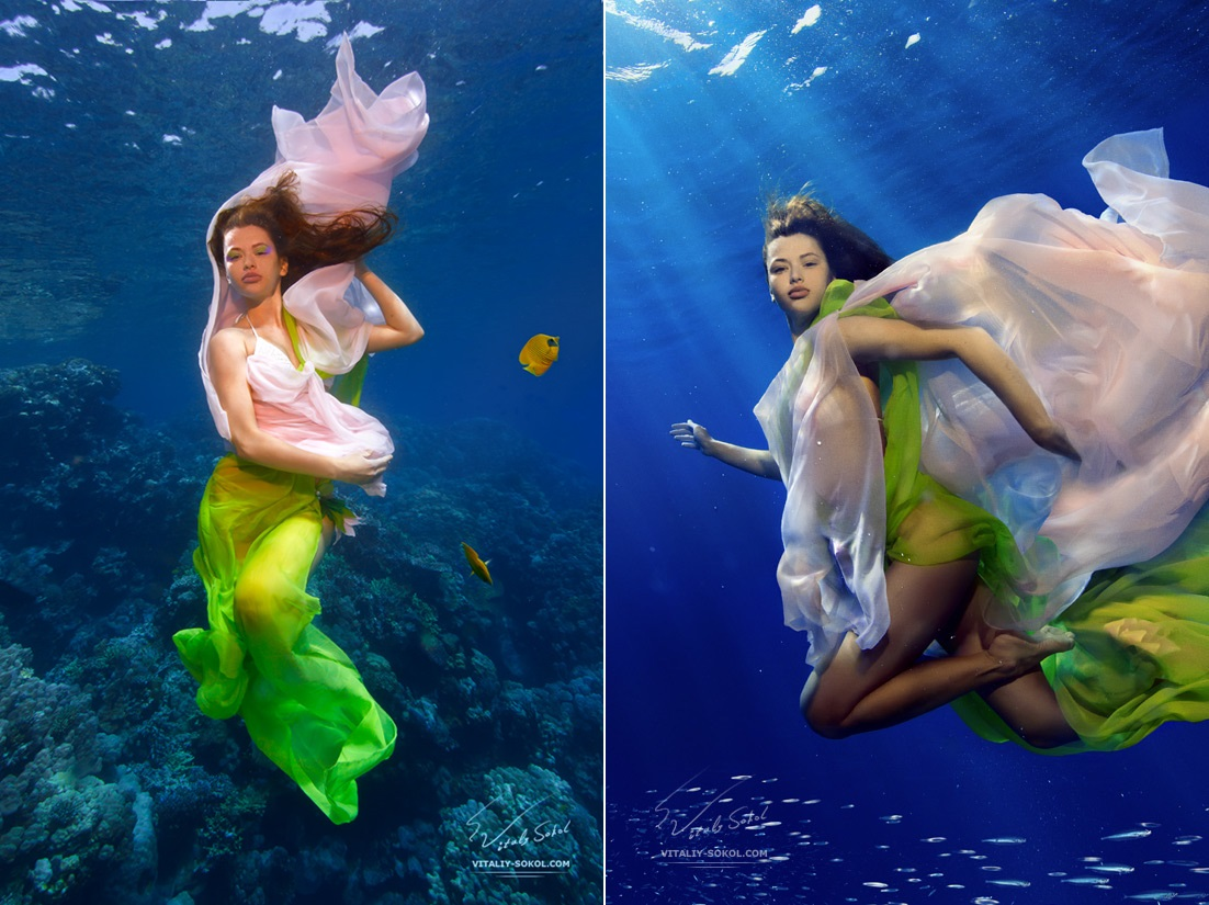Underwater dances: Wonderful undersea photos by Vitaly Sokol - 18