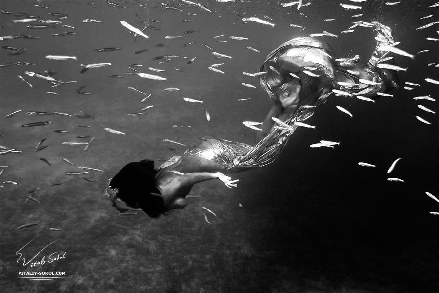 Underwater dances: Wonderful undersea photos by Vitaly Sokol - 21