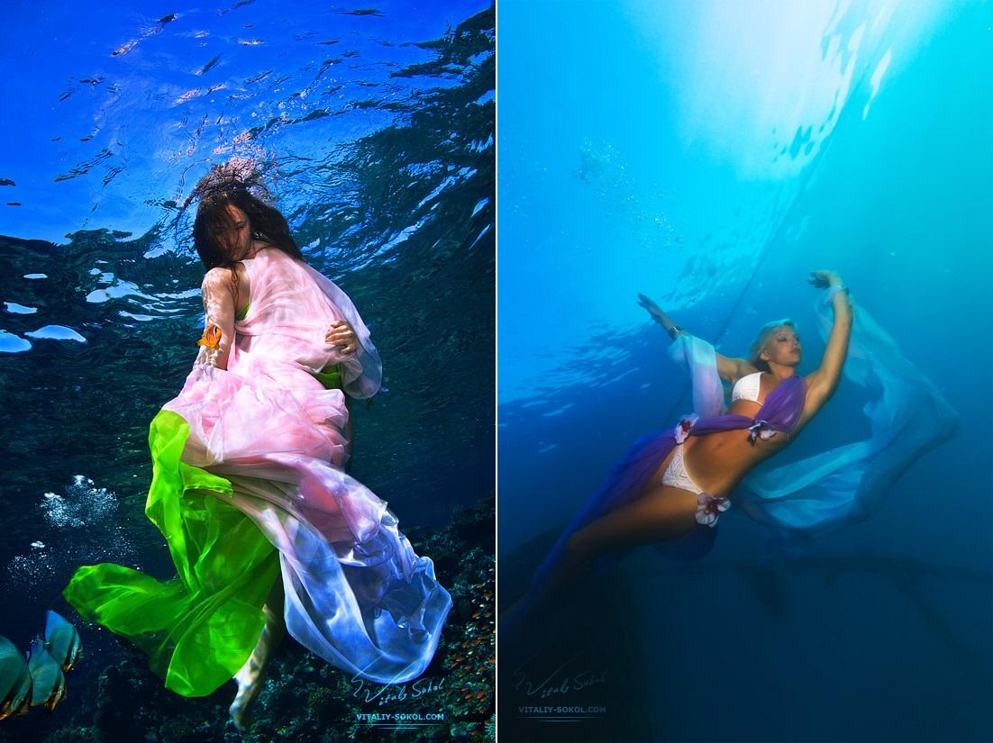 Underwater dances: Wonderful undersea photos by Vitaly Sokol - 23
