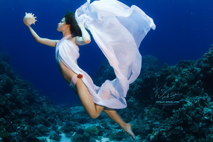 Underwater dances: Wonderful undersea photos by Vitaly Sokol - 25