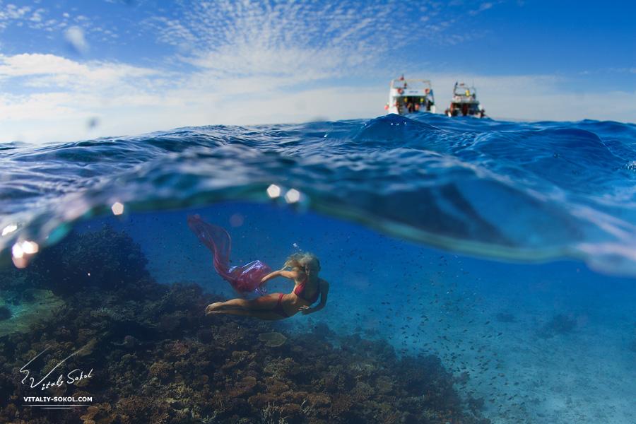 Underwater dances: Wonderful undersea photos by Vitaly Sokol - 27