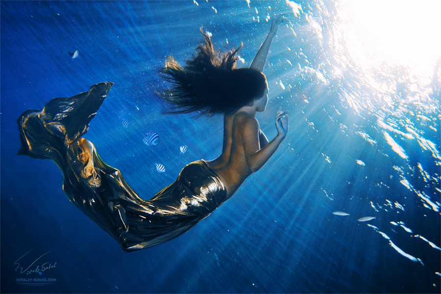 Underwater dances: Wonderful undersea photos by Vitaly Sokol - 37