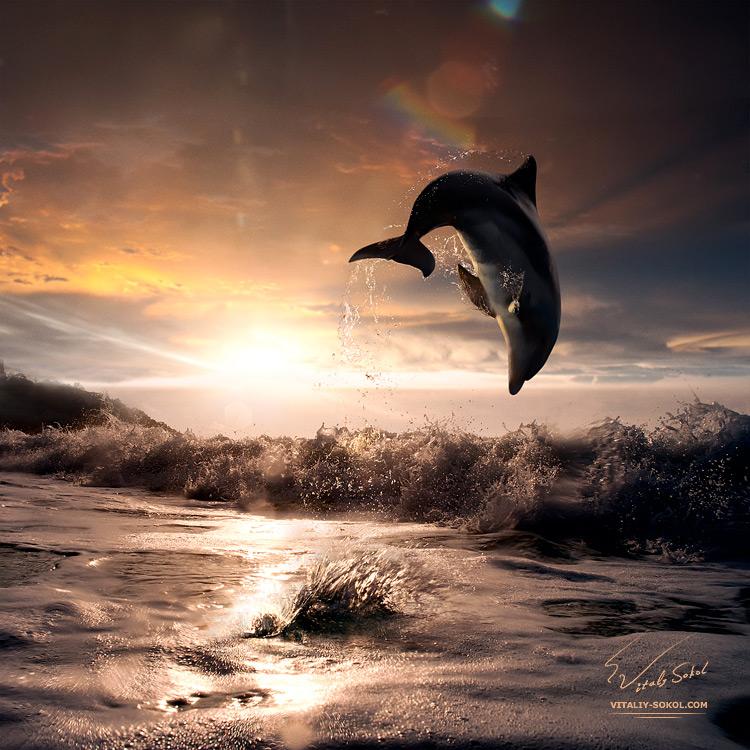 Underwater dances: Wonderful undersea photos by Vitaly Sokol - 05