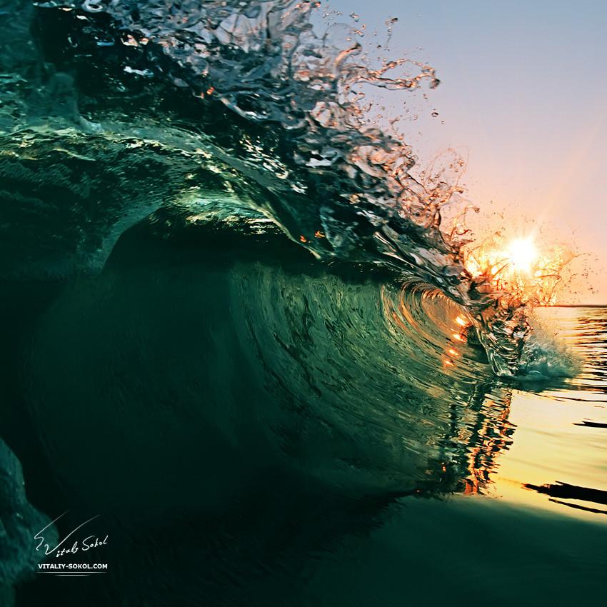 Underwater dances: Wonderful undersea photos by Vitaly Sokol - 52