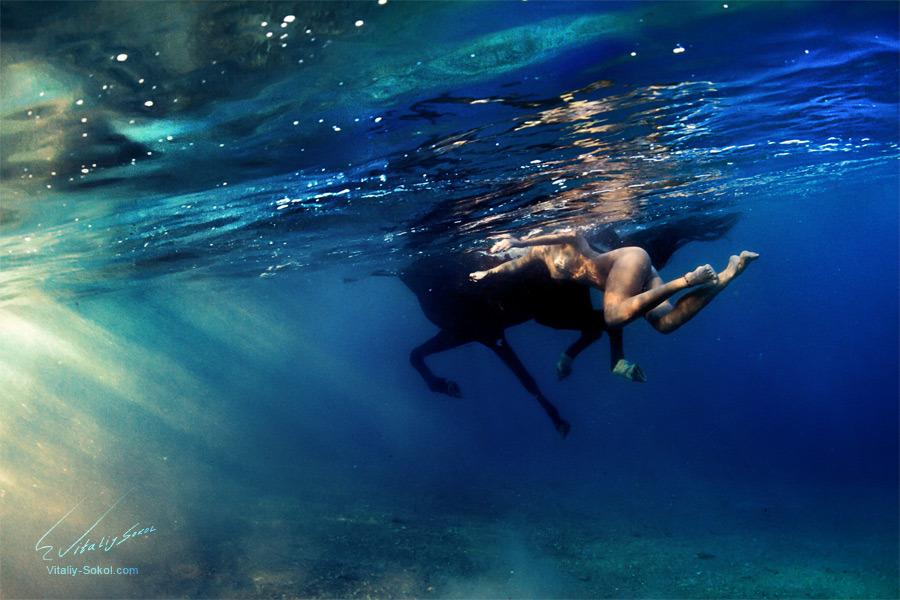 Underwater dances: Wonderful undersea photos by Vitaly Sokol - 59
