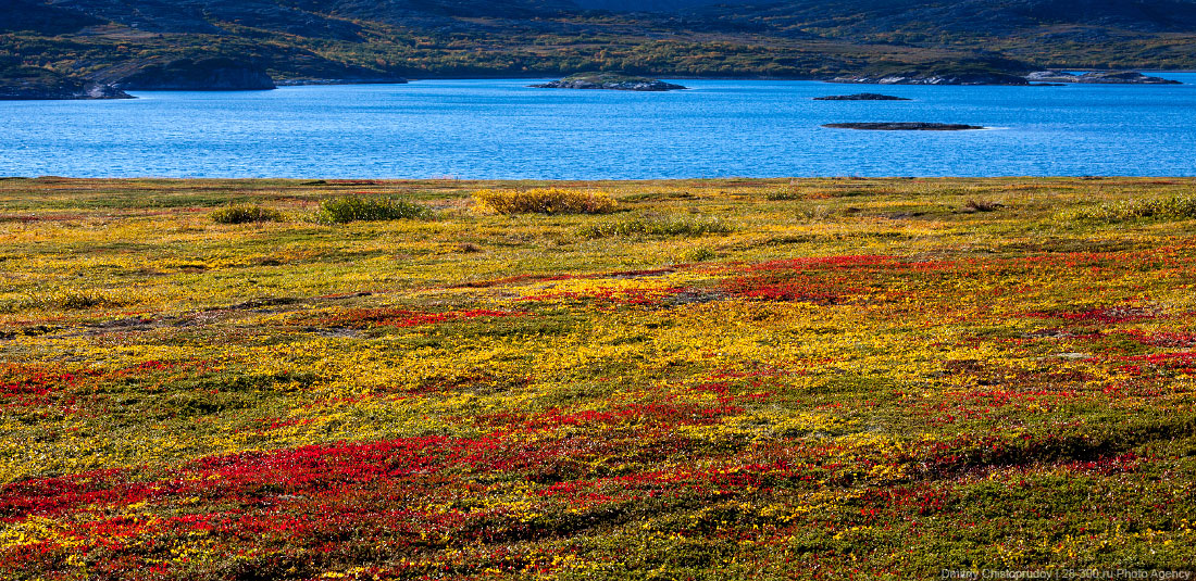 Kola Peninsula: Photos of beautiful wild nature and northern lights - 17