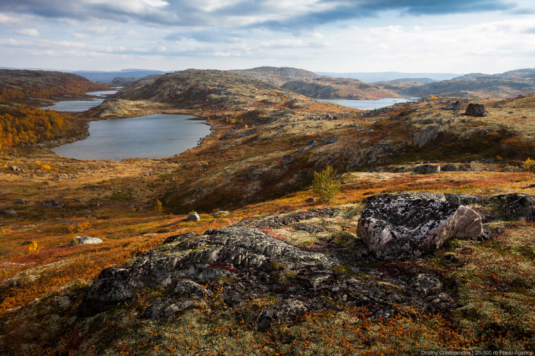 Kola Peninsula: Photos of beautiful wild nature and northern lights - 51