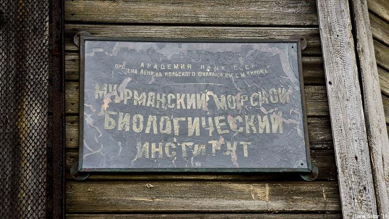 Dalniye Zelentsy: Half-forgotten rural locality on the Kola Peninsula - 33