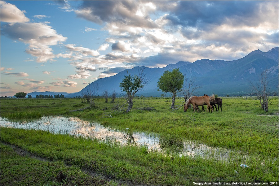 Republic of Buryatia: Wild landscapes and horses of Transbaikalia - 02