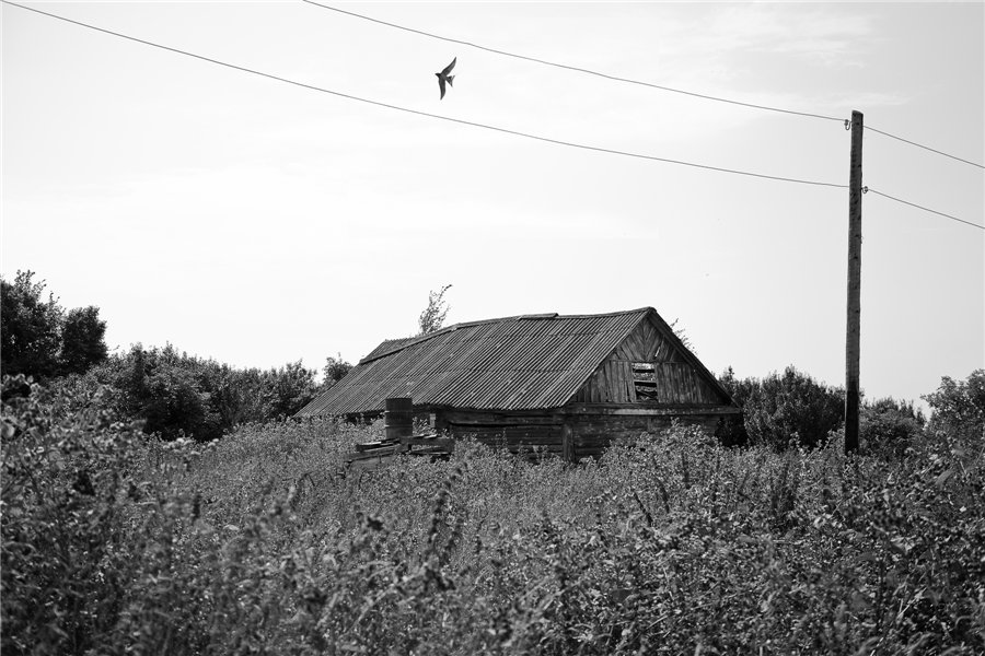 Photo project Forgotten Russia: Forlorn and dying villages - Gladskoye - 01