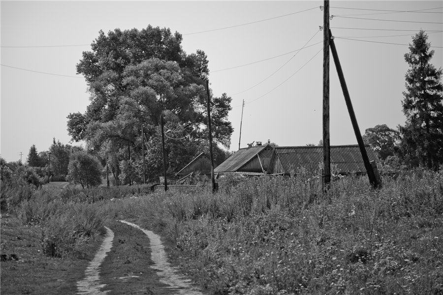 Photo project Forgotten Russia: Forlorn and dying villages - Gladskoye - 06