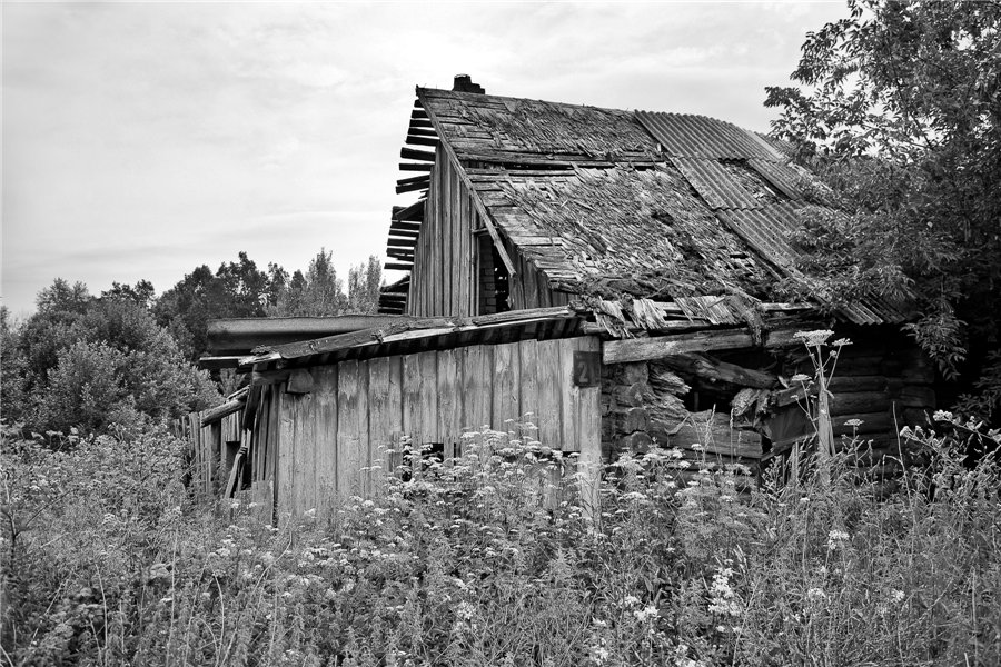 Photo project Forgotten Russia: Forlorn and dying villages - Kryuchki - 01