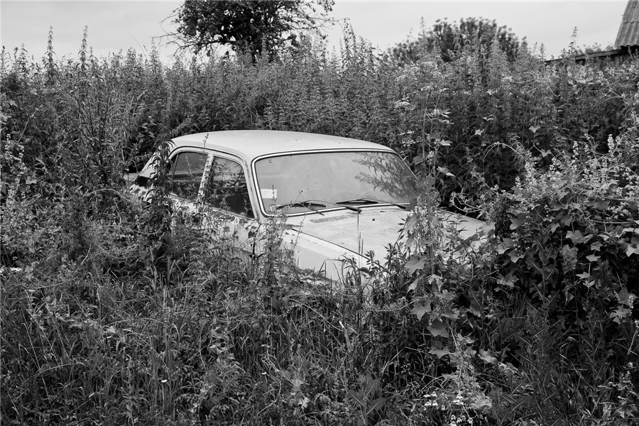 Photo project Forgotten Russia: Forlorn and dying villages - Osinki - 07