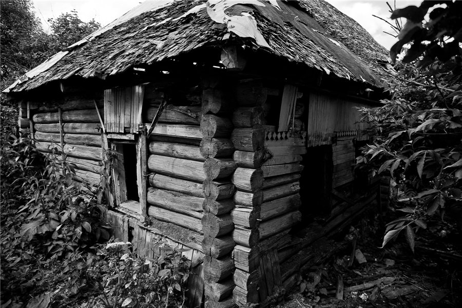 Photo project Forgotten Russia: Forlorn and dying villages - Shapkino - 05