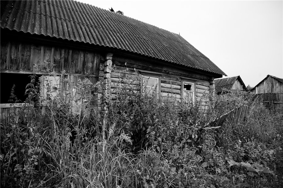 Photo project Forgotten Russia: Forlorn and dying villages - Uprusy - 03