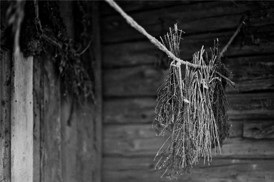 Photo project Forgotten Russia: Forlorn and dying villages - Urukovo - 09