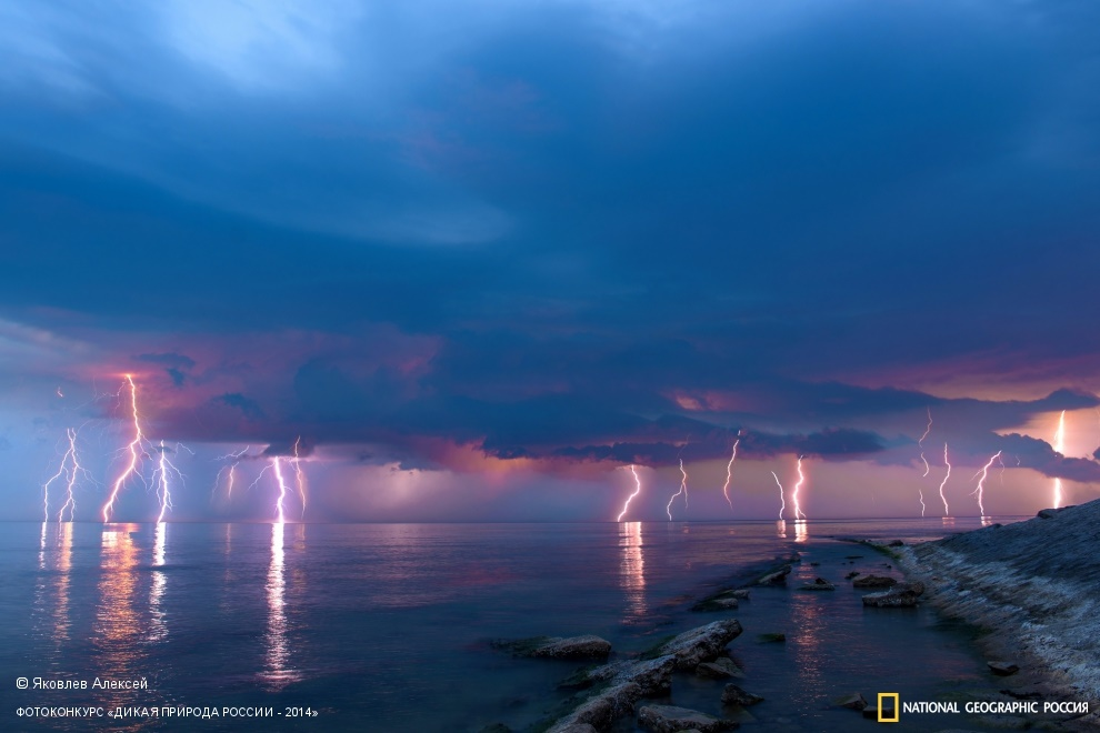 National Geographic: Photo contest Wild Nature of Russia 2014 - Part 1 - 16