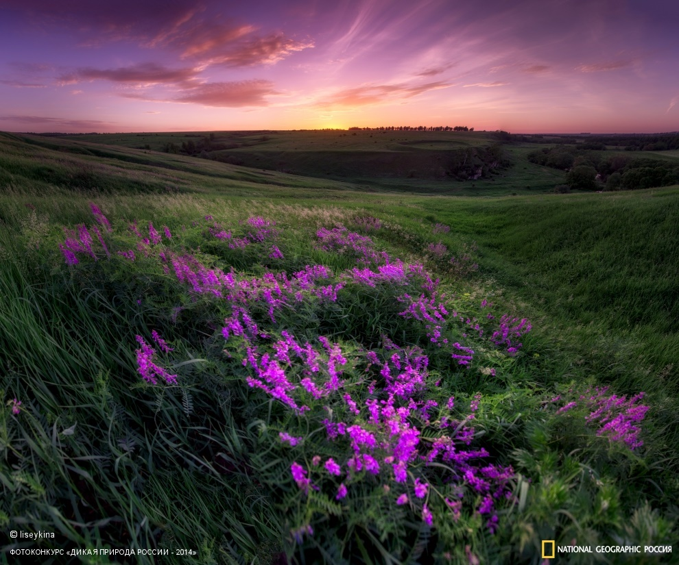National Geographic: Photo contest Wild Nature of Russia 2014 - Part 1 - 19