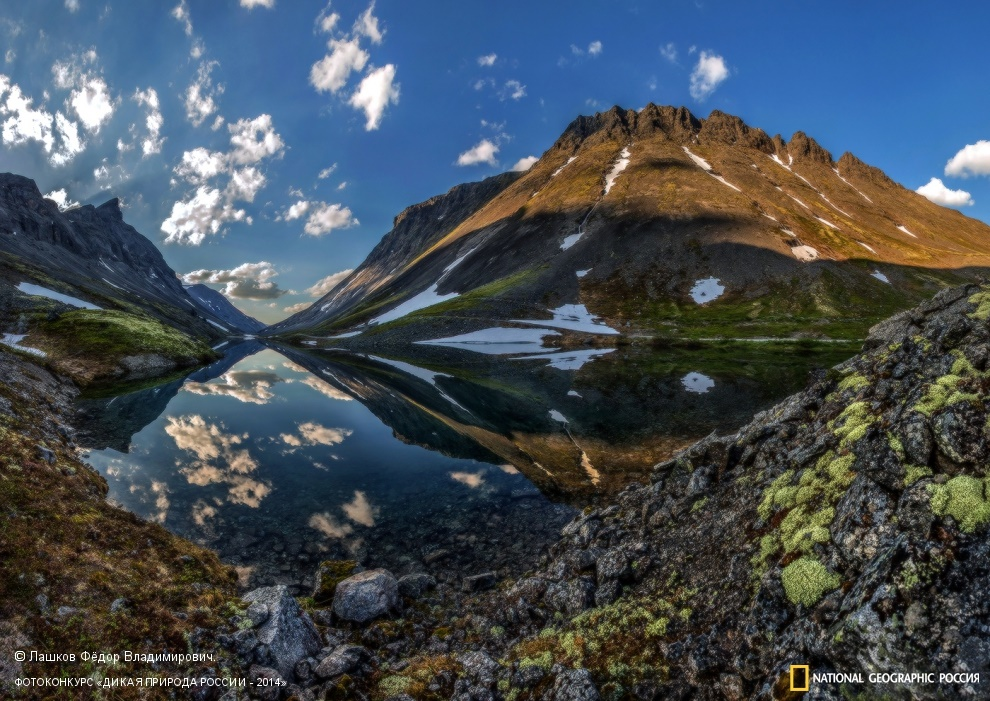 National Geographic: Photo contest Wild Nature of Russia 2014 - Part 1 - 65