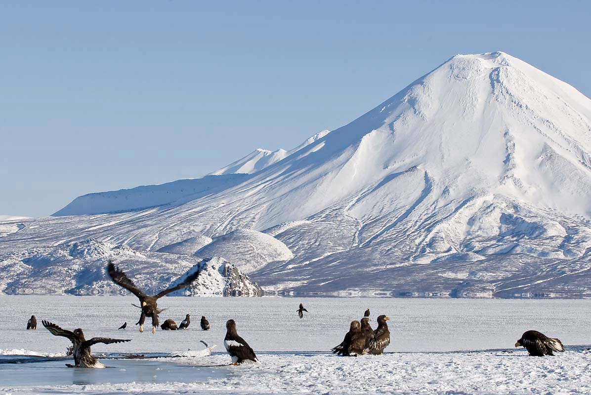 Beautiful photos from Kamchatka - 21