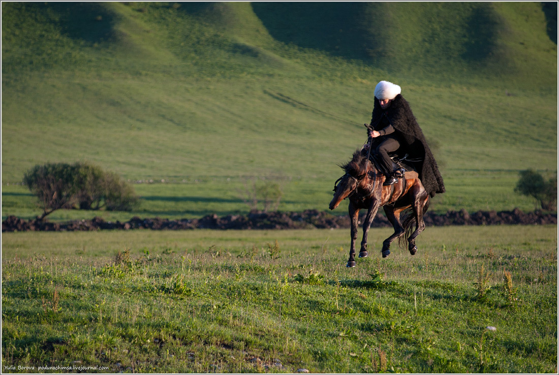 Karachay–Cherkess Republic: A territory of enchanting horses - 14