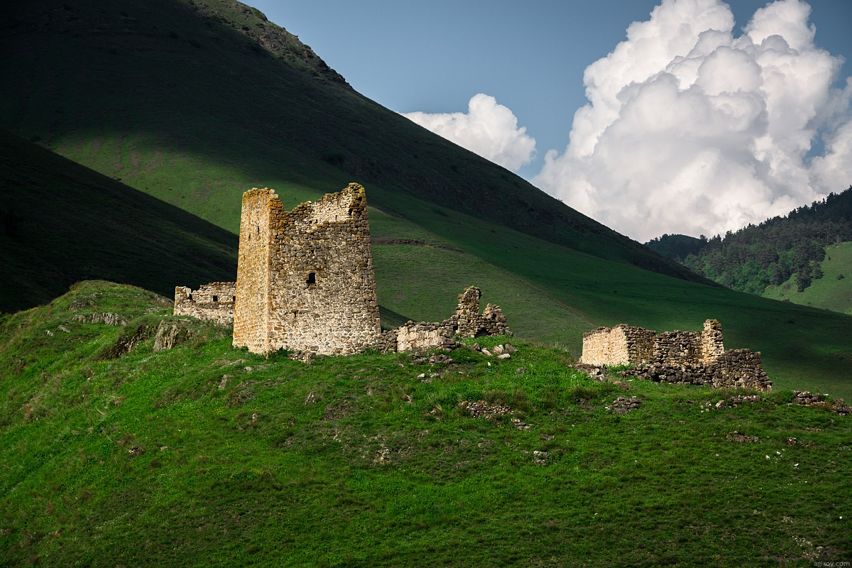 Nature of Ingushetia: Picturesque landscapes of the Republic - 61