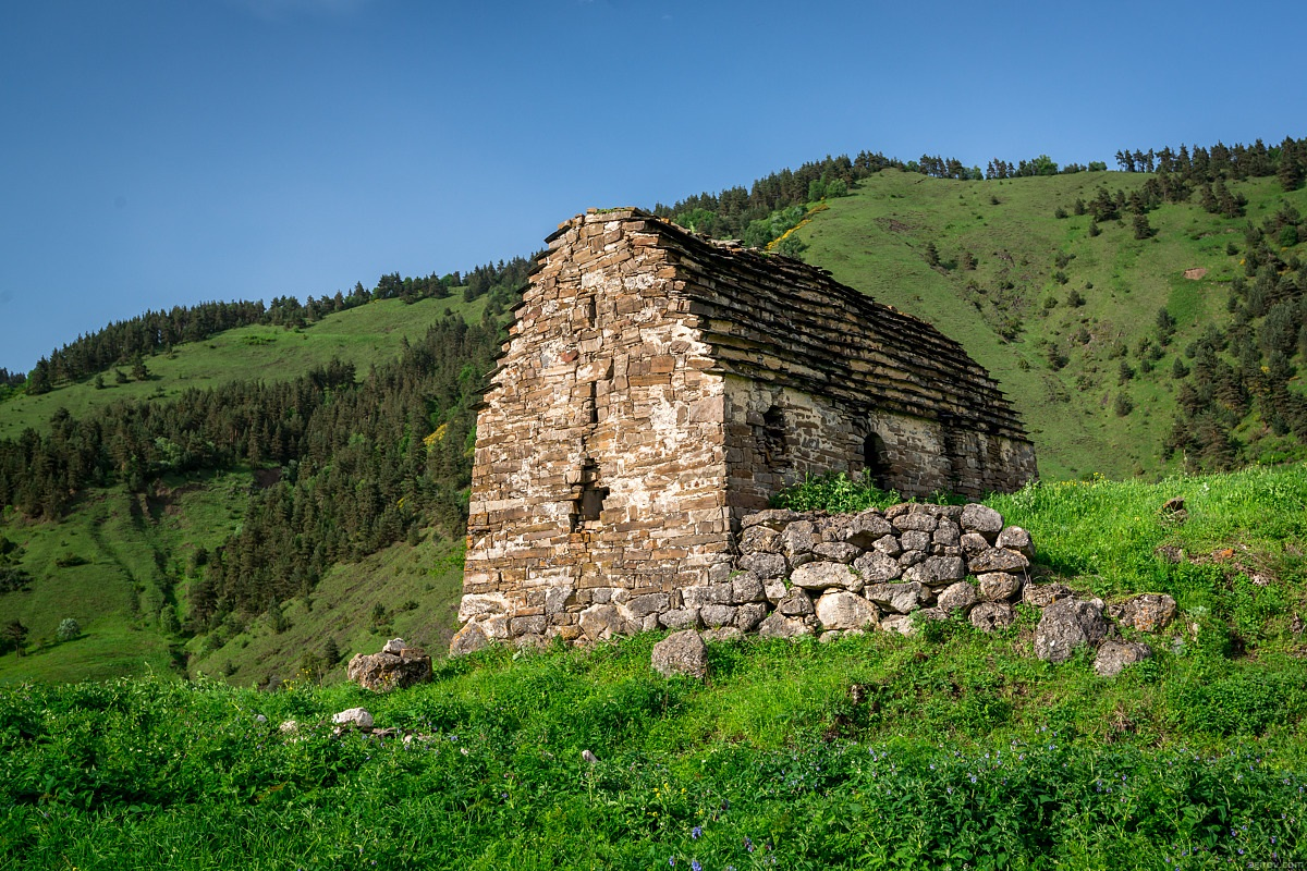 Nature of Ingushetia: Picturesque landscapes of the Republic - 65