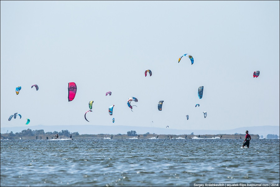 BeeCamp 2014: Festival of music and sport on a Black Sea's shore - 21