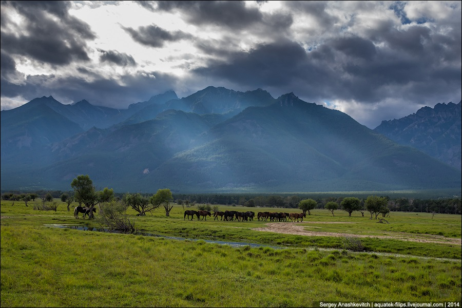 Republic of Buryatia: Wild landscapes and horses of Transbaikalia - 01