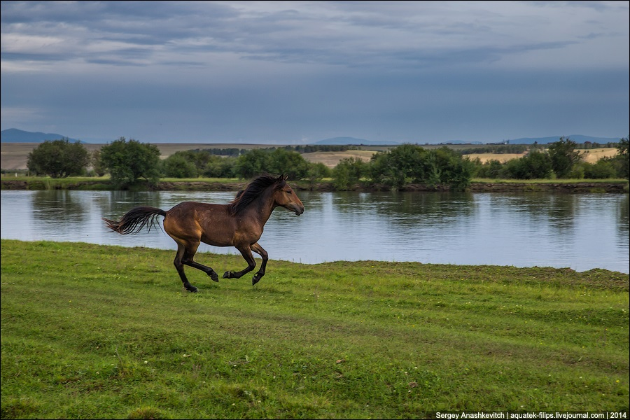 Republic of Buryatia: Wild landscapes and horses of Transbaikalia - 07