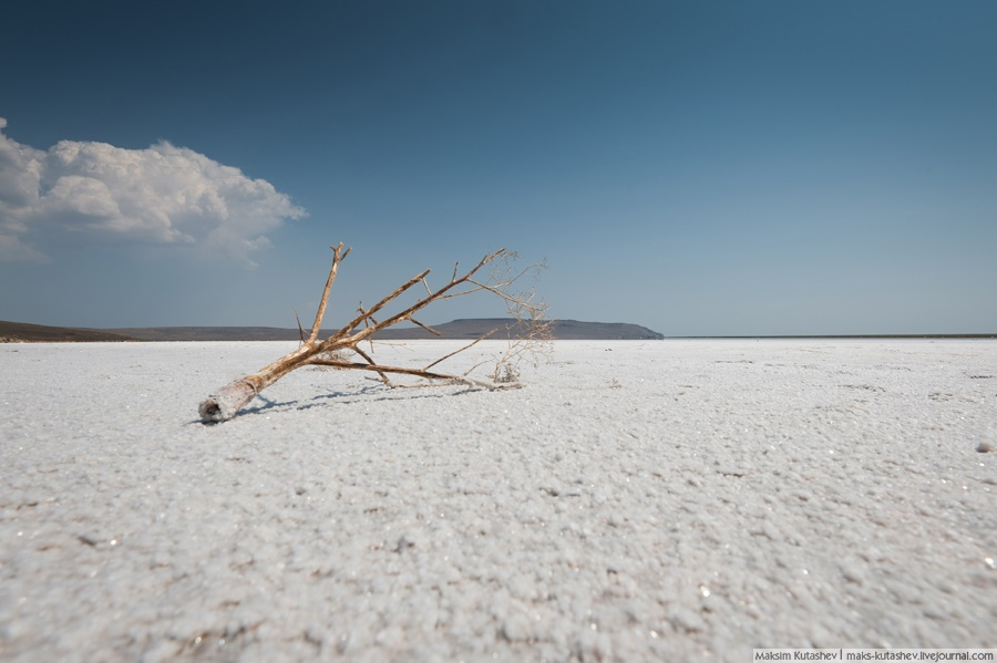 White silence: Walking on a shore of Koyashskoe lake in Crimea - 09