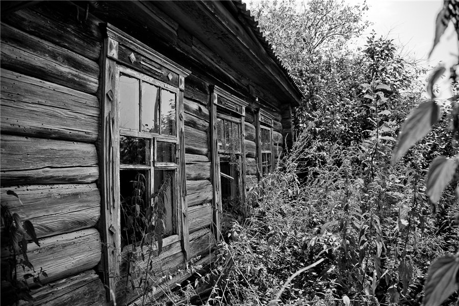 Photo project Forgotten Russia: Forlorn and dying villages - Gladskoye - 16
